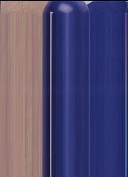The Dodgers Encyclopedia PDF