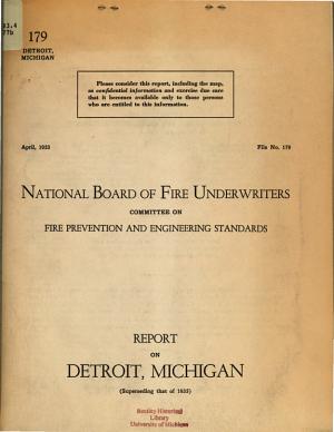 Report on Detroit  Michigan PDF
