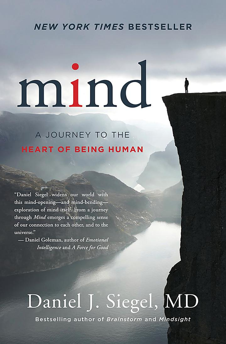 Mind: A Journey to the Heart of Being Human (Norton Series on Interpersonal Neurobiology)