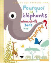 Pourquoi les éléphants aiment-ils tant leur trompe ?