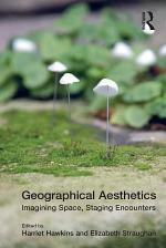 Geographical Aesthetics