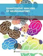 Quantitative analysis of neuroanatomy