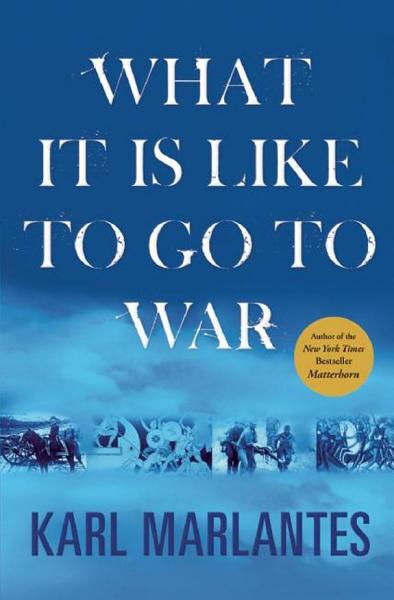 Download What It Is Like to Go to War Book
