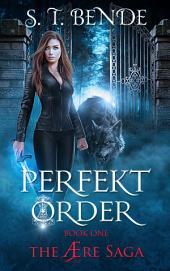 Perfekt Order: The Ære Saga: Book One