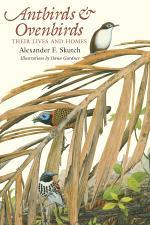 Antbirds and Ovenbirds