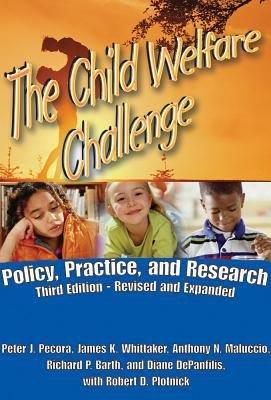 The Child Welfare Challenge  Third Edition PDF