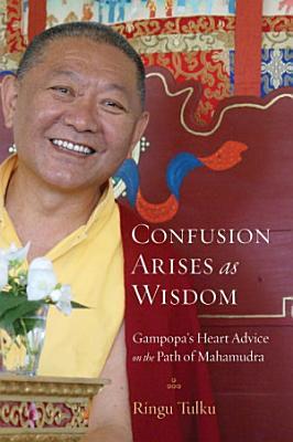 Confusion Arises as Wisdom PDF