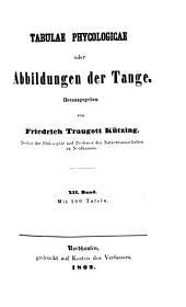 Tabulae phycologicae oder Abbildungen der Tange: XII