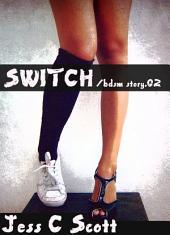 Switch (bdsm story.02)