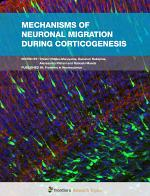 Mechanisms of Neuronal Migration during Corticogenesis