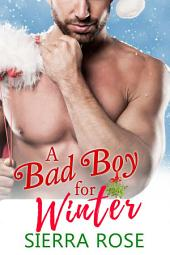 A Bad Boy For Winter - Book 1