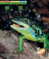 蜥蜴: 親親自然116