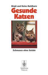 Gesunde Katzen: Schmusen ohne Gefahr