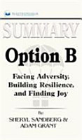 Summary of Option B PDF