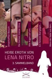 Heiße Erotik von Lena Nitro - 3. Sammelband: Stories von Lena Nitro