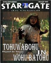 STAR GATE 029: Tohuwabohu in Wohu Batohu