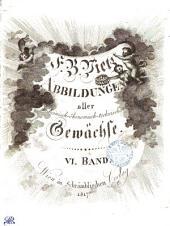 F. B. Vietz Abbildungen aller medicinisch-ökonomisch-technischen Gewächse. VI. Band: Band 6