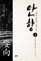 안향 3권: 안향 3 꿈을 꽃피우다