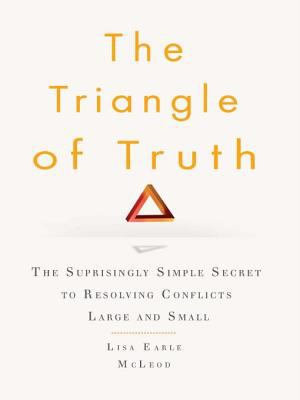 The Triangle of Truth PDF
