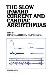 The Slow Inward Current and Cardiac Arrhythmias
