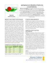 Asparagus Production in Calfornia