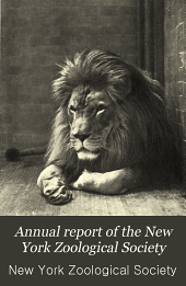 Annual Report of the New York Zoological Society: Volume 7