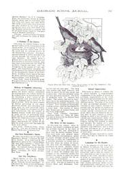Colorado School Journal PDF