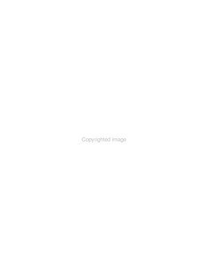Textile Chemist and Colorist PDF