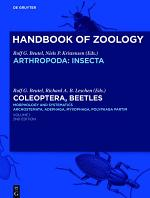 Coleoptera, Beetles. Morphology and Systematics