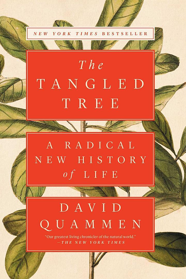 The Tangled Tree