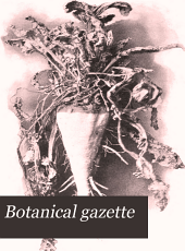 Botanical Gazette: Volume 28