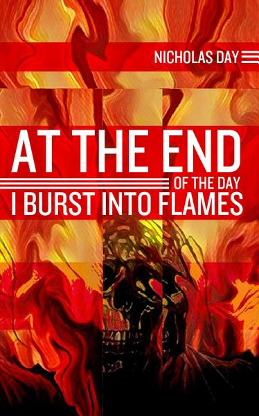 Download At The End of the Day I Burst Into Flames Book