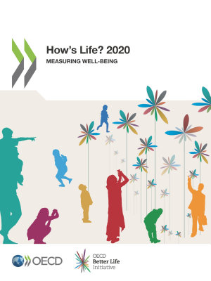 How s Life  2020 Measuring Well being