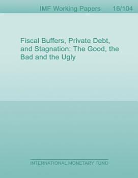 Fiscal Buffers  Private Debt  and Stagnation PDF