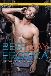 Best Gay Erotica of the Year: Volume 3