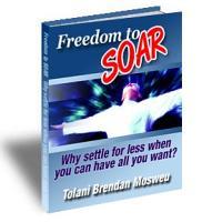 Freedom to Soar PDF