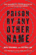 Prison By Any Other Name Book PDF
