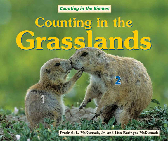 Counting in the Grasslands PDF