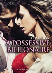 A Possessive Billionaire vol.6: His, Body and Soul
