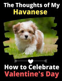 The Thoughts of My Havanese