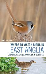 Where to Watch Birds in East Anglia