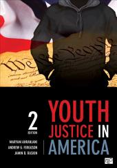 Youth Justice in America: Edition 2