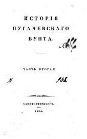 Исторія Пугачевскаго бунта: Том 2