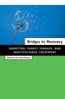 Bridges to Recovery PDF