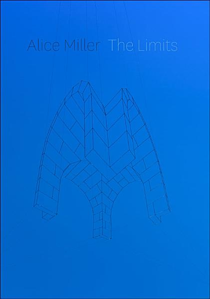 Download The Limits Book