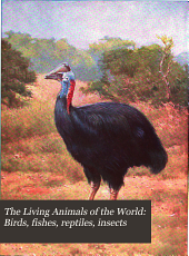 The Living Animals of the World: Birds, fishes, reptiles, insects