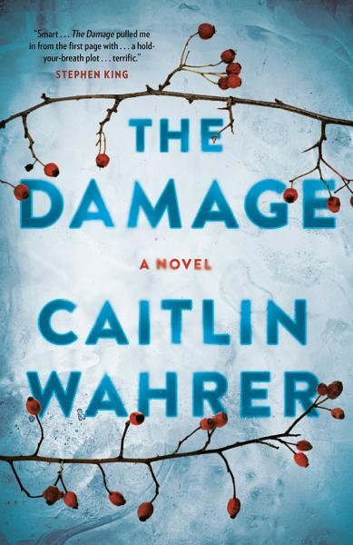 Download The Damage Book
