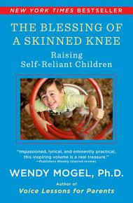 The Blessing Of A Skinned Knee PDF
