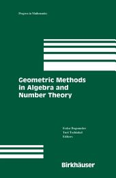 Geometric Methods in Algebra and Number Theory