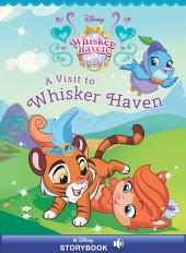 Palace Pets: A Visit to Whisker Haven: A Disney Read-Along